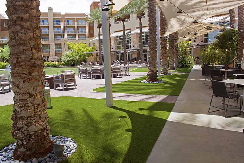 Marriott Desert Ridge Artificial Grass ST354